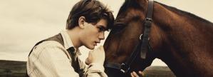 war-horse (1)